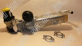 EGR Ventil BORG WARNER 03L131512DQ WAHLER 710861D